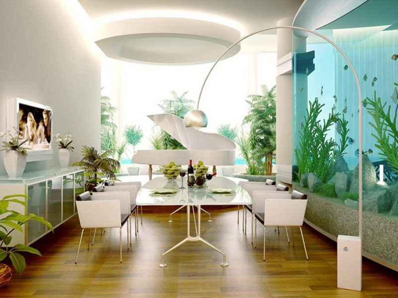 Utilizando acuarios como elementos decorativos